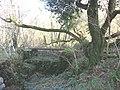The sluice gate of the old Llyn Pen-yr-allt - geograph.org.uk - 318566.jpg
