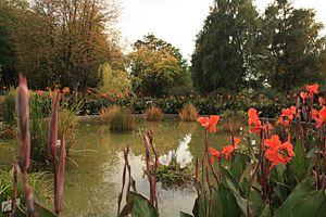 Iași Botanical Garden - The small pond (autumn 2015)