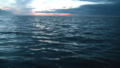 The wadden sea.png