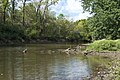 Three Creeks - Big Walnut Creek right after Confluence 5.jpg