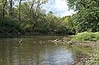 Three Creeks - Big Walnut Creek right after Confluence 5.jpg