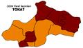 Tokat2009Yerel.png
