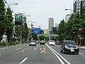 Tokyo Route 312 -01.jpg
