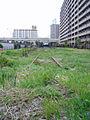 Tokyo port railway 2006-3.jpg