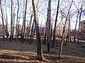 Tomsk, Tomsk Oblast, Russia - panoramio (38).jpg