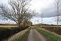 Track from Priory Farm to Cottage Farm - geograph.org.uk - 712469.jpg