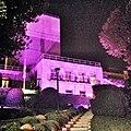 U.S. Embassy in Spain lit in pink for 2014 BCAM.jpg