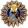 USAFABadge.jpg