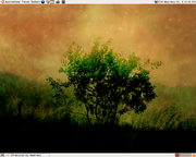 A screenshot of Ubuntu 6.06 LTS, showing the Dawn of Ubuntu wallpaper