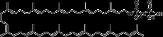 C55-isoprenyl pyrophosphate - Image: Undecaprenyl pyrophosphate