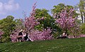 University Park MMB »33.jpg