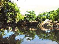 Upper Zapote River.jpg