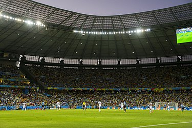 Uruguay - Costa Rica FIFA World Cup 2014 (22).jpg