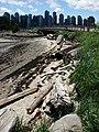 Vancouver-Stanley-Park-Low-Tide-8768.jpg