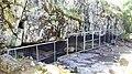 Varggrottan i Kristinestad är Nordens äldsta kända boplats 20170615, bild 2.jpg