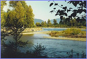 Chilliwack - Vedder River Campground near Cultus Lake, located just south of Chilliwack
