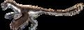Velociraptor recon.png