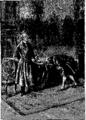 Verne - P'tit-bonhomme, Hetzel, 1906, Ill. page 245.png