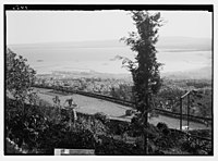 View of Haifa & the harbour from Allenby terrace. LOC matpc.03899.jpg