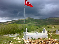 View of the cemetery in Şalcılar, Aydıntepe.jpg