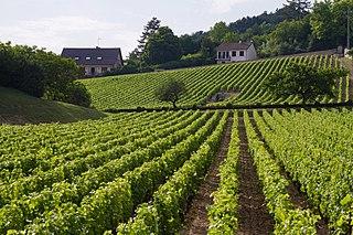 Bourgogne-Franche-Comté Administrative region of France