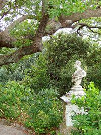 Villa Durazzo-Pallavicini - Bust of Michele Canzio.JPG