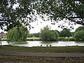 Village Pond, Theydon Bois - geograph.org.uk - 218614.jpg