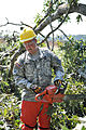 Virginia National Guard soldiers clear fallen trees 110828-A--356.jpg