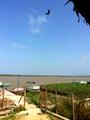 Vista del río Magdalena 2014-09-21.png