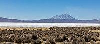 Volcán Ubinas y Laguna de Salinas, Arequipa, Perú, 2015-08-02, DD 48.JPG