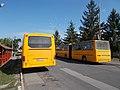 Volvo 8700 LE, Ikarus C80, Bus station, 2017 Fehérgyarmat.jpg