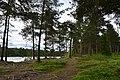 Walking trail, Inari, Finland (21) (35848888254).jpg