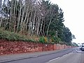 Wall in Totnes Road - geograph.org.uk - 1100524.jpg