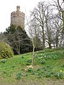 Water Tower, Park Hill - geograph.org.uk - 1343876.jpg