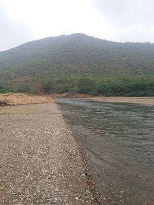 Hogenakkal Integrated Drinking Water Project - Water flow near hogenakkal falls in Tamil Nadu