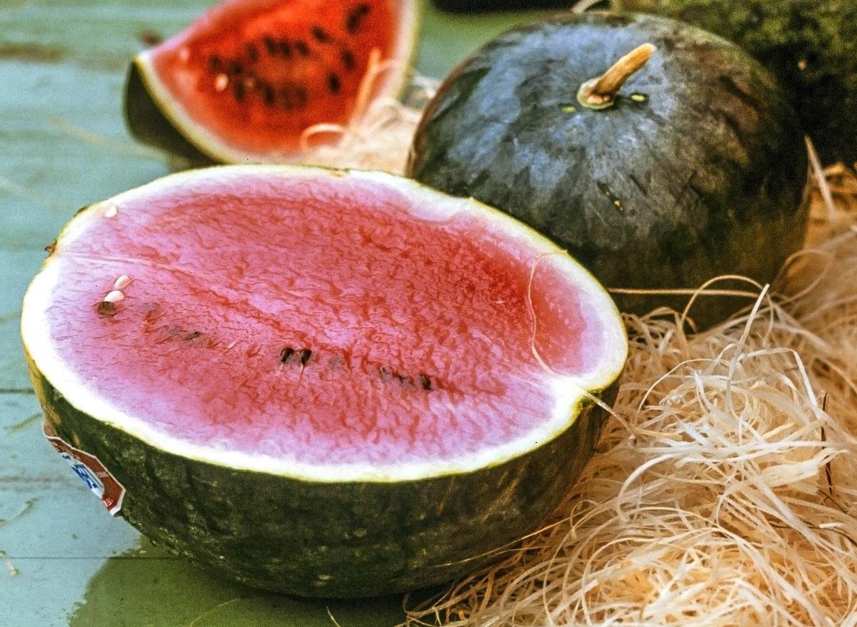 vattenmelon vatten procent