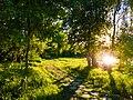 Way of nature.jpg