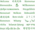 Welcome in 21 languages PDF.pdf