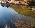 West Little Owyhee Wild and Scenic River (27091768377).jpg