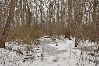 Cedar Swamp Archeological District United States historic place