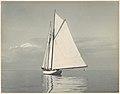 White Sailboat in Long Island Sound MET DP113900.jpg