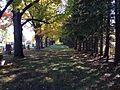 Whitevale Cemetery, Pickering, Canada 03.jpg