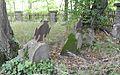 Wiśniowa - Cmentarz nr 374 - Groby i ogrodzenie.jpg