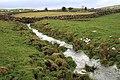 Wild Sike - geograph.org.uk - 677534.jpg