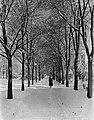 Winter, alley Fortepan 62693.jpg
