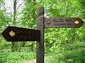 Wolds Way - Centenary Way fingerposts on the edge of Settrington Wood - geograph.org.uk - 439521.jpg