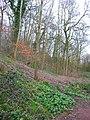 Woodland near Wistaston Brook - geograph.org.uk - 365619.jpg