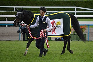 World Premiere (horse) Japanese Thoroughbred racehorse
