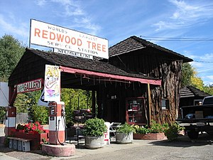 "Ukiah, California - The ""World's Largest Redwood Tree Service Station"" in Ukiah is built largely from a massive section of Sequoia."