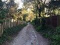 Worthing, UK - panoramio (116).jpg